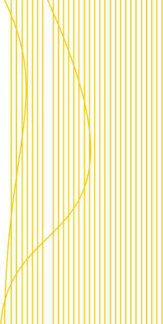 LinesFooterRight